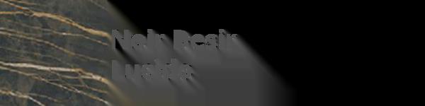K04 Noir Désir Lucido