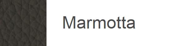 JP38 Marmotta