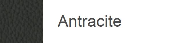 Piele Antracite